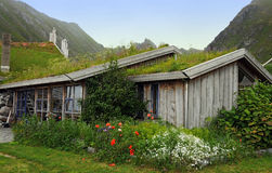 Grass covered norwegian house Stock Photo