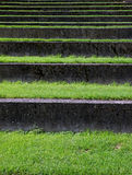 Grass covered stairs Stock Photography