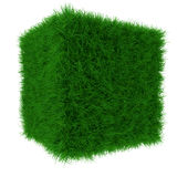 Grass cube Stock Photography