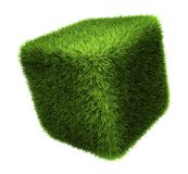 Grass Cube. Isolated on white background, 3d render Royalty Free Stock Photo