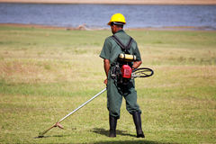 Grass cutter Royalty Free Stock Image