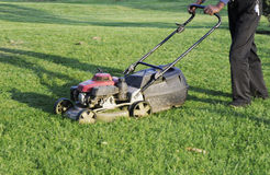 Grass cutter. Mower cutting the grass Royalty Free Stock Images