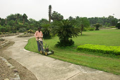 Grass Cutting. Gardner is cutting grass in park Royalty Free Stock Photo