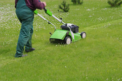 Grass cutting Stock Photo