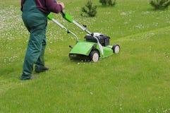 Grass cutting Stock Photo