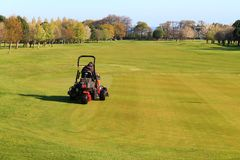 Grass cutting on a golf course. Stock Photography