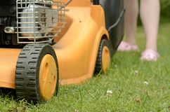 Grass cutting process Royalty Free Stock Images