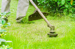 Grass cutting Royalty Free Stock Photo