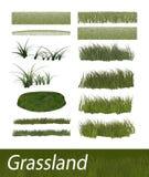 Grass 3D Elements Builder Stock Photos