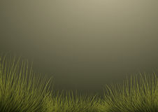Grass on dark green background Royalty Free Stock Images