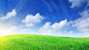 Grass and deep blue sky Royalty Free Stock Image