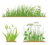 Grass Design Elements Royalty Free Stock Images