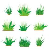 Grass Design Elements Royalty Free Stock Image