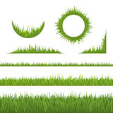 Grass design elements Stock Photo