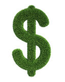 Grass dollar Stock Image
