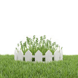 Grass with dollar symbol Stock Image
