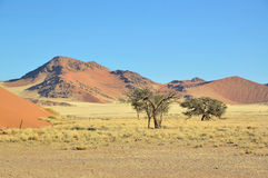 Grass, dune and mountain landscape near Sossusvlei Stock Image