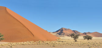 Grass, dune and mountain panorama near Sossusvlei, Royalty Free Stock Photo