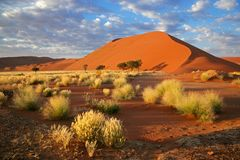 Grass, dune and sky, Sossusvlei, Namibia Royalty Free Stock Photography