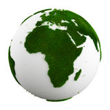 Grass earth - affrica Royalty Free Stock Images
