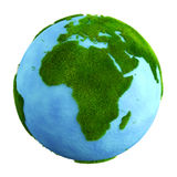 Grass earth - affrica Royalty Free Stock Photos