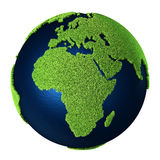 Grass Earth - Africa Stock Image