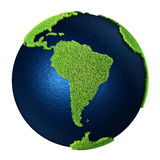 Grass Earth - South America Stock Images