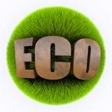 Grass eco Stock Image