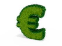 Grass euro Royalty Free Stock Image