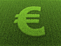 Grass Euro Sign Royalty Free Stock Image