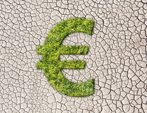 Grass Euro sign on cracked earth background Stock Photos
