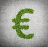 Grass Euro sign Royalty Free Stock Photography