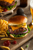 Grass Fed Bison Hamburger stock images