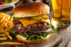 Grass Fed Bison Hamburger. With Lettuce and Cheese royalty free stock photos