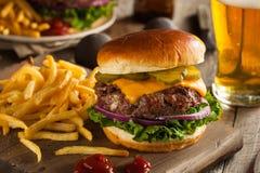 Grass Fed Bison Hamburger stock photography