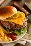 Grass Fed Bison Hamburger. With Lettuce and Cheese stock photo