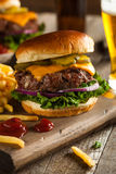 Grass Fed Bison Hamburger. With Lettuce and Cheese royalty free stock photo