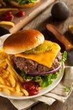 Grass Fed Bison Hamburger royalty free stock image