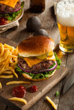 Grass Fed Bison Hamburger. With Lettuce and Cheese royalty free stock image