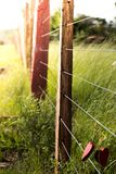 Grass, Fence, Leaf, Plant Royalty Free Stock Photography