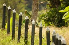 Grass, Fence, Tree, Outdoor Structure Stock Photo