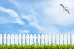 Grass and fence under blue sky, clouds and bird Royalty Free Stock Photos