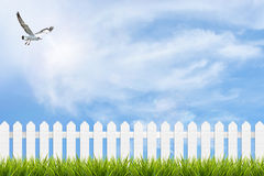 Grass and fence under blue sky, clouds and bird stock image