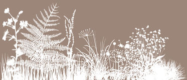 Grass field. Editable illustration of grass field royalty free illustration
