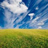Grass field. Green grass field and deep blue sky Stock Photos