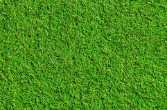 Grass field. On top view royalty free stock photo