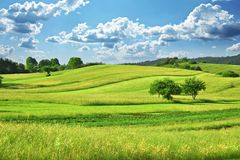 Grass Field. Green Grass Field  Landscape with fantastic clouds in the background Stock Photo