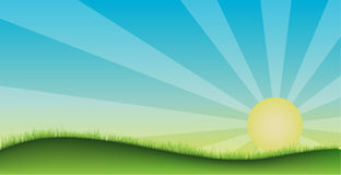 Grass field stock illustration