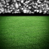 Grass field arena Royalty Free Stock Photography