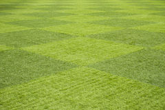 Grass field. Artificial grass field in checked for a soccer field Stock Photo